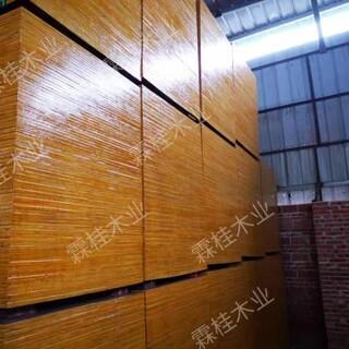 广西桉木清水模板厂家批发,规格多样图片1