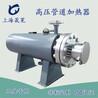 防冻水池加热器饱和蒸汽辅助电加热器高温高压管道电加热器
