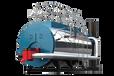 WNS2-1.25-Y/Q低氮燃氣蒸汽鍋爐--廠家-節成本30