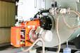 0.2噸低氮燃氣蒸汽鍋爐