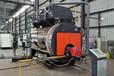 15噸氮燃氣鍋爐