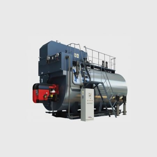 CWNS1.05-85/60-(Q)燃氣熱水鍋爐--_廠家_質量可靠