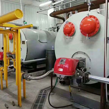15噸全自動預混燃氣熱水鍋爐--用于-水產-養殖