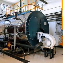 6噸低氮燃氣熱水鍋爐--用于-水產-養殖