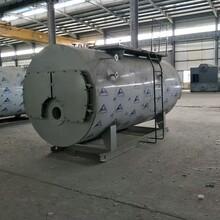 4噸燃油氣熱水鍋爐--養殖-供暖-加溫
