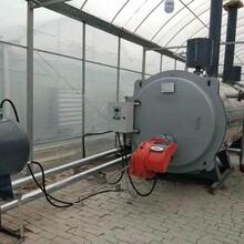 2噸全預混低氮冷凝燃氣鍋爐--居民供暖-集中供暖