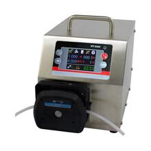 BT100S智能调速蠕动泵/液晶显示恒流泵/无级调速蠕动泵现货图片