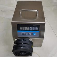 BT600S定时蠕动泵/液体分装蠕动泵/不锈钢调速恒流泵图片