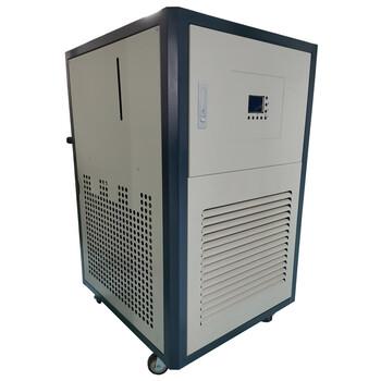 50升實驗室循環機/DLSB-50/60低溫冷卻液實驗泵