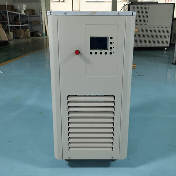 40升低温恒温泵/DLSB-40/120低温冷却机