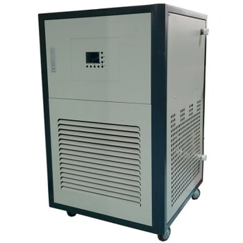 DLSB-50/20低溫恒溫循環機/50升低溫恒溫循環器現貨