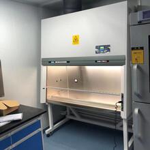 實驗室全排生物安全柜報價、BSC-1100LIIB2二級生物安全柜廠家圖片