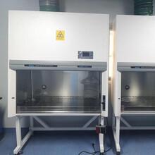 BSC-1100IIA2半排式生物安全柜/二级实验生物柜价格图片