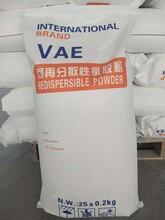 欽州浦北砂漿膠粉歡迎來電圖片