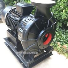 源立ktx300-250-315系列空调泵泳池抽水泵大流量大功率图片