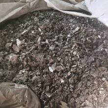 西安雁塔焊锡渣回收量大价优图片