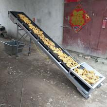 皮带输送机养殖场草料输送机草料输送机可移动输送机图片