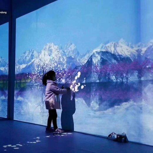 宜蘭縣沉浸式投影互動,游樂設備制造