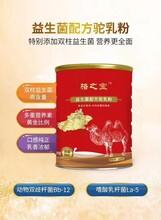 哈納斯乳業駱之寶配方駝奶粉