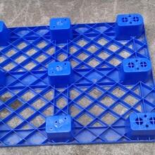 東莞訂制九腳塑膠卡板廠電話圖片