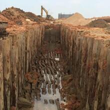 連州周邊施工租賃9米管線支護鋼板樁圖片