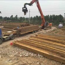 莞城鋼板樁支護設備中鑫基礎工程圖片