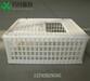 周轉箱廠家塑料周轉箱塑料雞籠子
