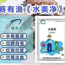 水產廠家賽有漁水美凈預防治水霉鰓霉花斑鰓圖片