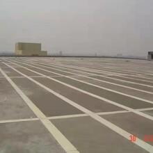 河东轻型屋面板工程图片