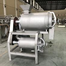 銀洲YZ-DJ-2/去核打漿機圖片