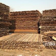 建筑用钢管回收大量求购二手架子管卡扣回收出售