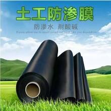 藍森黑膜防滲膜,獨特土工膜防滲膜黑膜造型美觀圖片