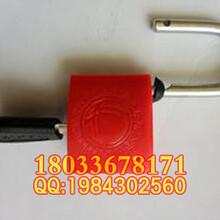 专业生产梅花表箱锁电力挂锁塑钢电力表箱锁