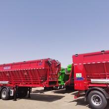 履带自卸半挂车,后推平移式自卸车,河沙运输车图片