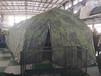 平頂山網架帳篷