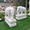 漢白玉石雕大象-石雕小象擺件-吉祥如意石象雕刻廠家