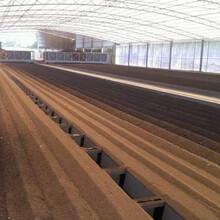 福環環保FFG-100型新能源污泥處理干化做有機肥干化制磚新設備圖片
