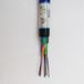 GYTS-48B1光纜