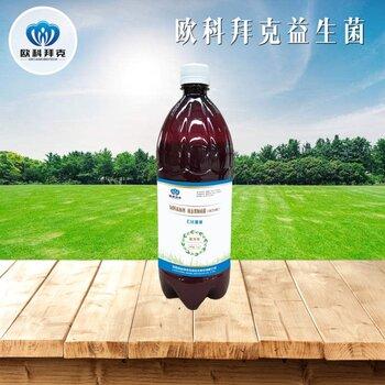 飼料添加劑液態糞腸球菌OKT1402EM菌液通用型畜禽腸道益生菌