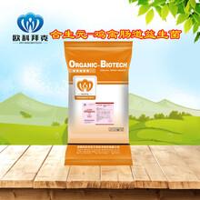 供應動物腸道益生菌,糞腸球菌,雞用混合型飼料添加劑