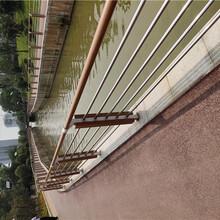 上海青浦不銹鋼復合管護欄防撞護欄電議優先發貨圖片