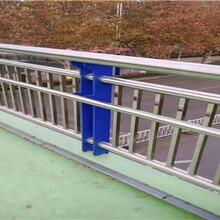 廣東不銹鋼復合管護欄防撞護欄來圖定制圖片