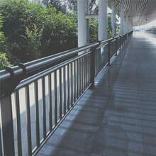 辽宁丹东景观护栏防撞护栏优先发货图片
