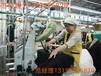 黃岡出國務工韓國包吃住建筑工廚師