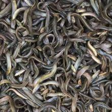 國家支持水產養殖嗎有補跌政策嗎?圖片