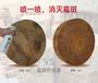 木材防霉除霉