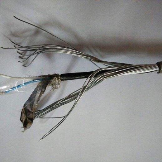 生產天聯S485通訊線纜品種繁多