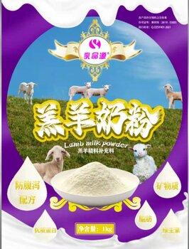 羔羊的飼喂使用羔羊奶粉