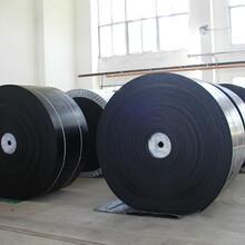 青岛工厂直供耐寒输送带耐划裂型图片