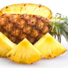 求購菠蘿荔枝桂圓甜瓜檸檬西瓜山楂桔子桃子椰子杏子人參果甘蔗圖片